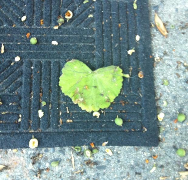 Even an ugly doormat needs love
